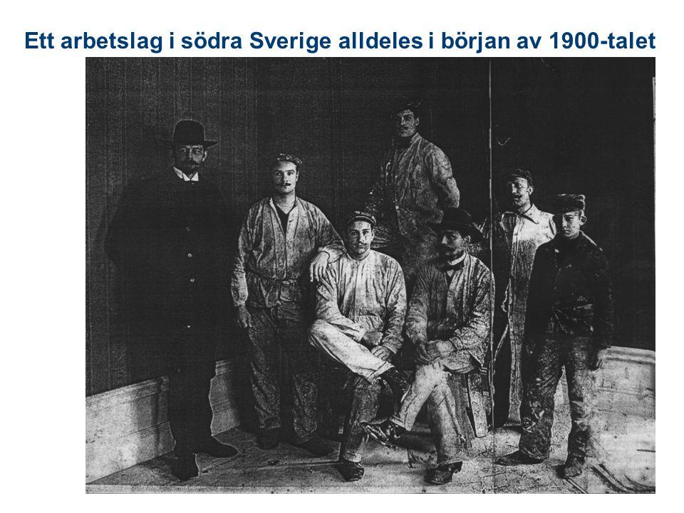 Ett arbetslag i södra Sverige alldeles i början av 1900-talet