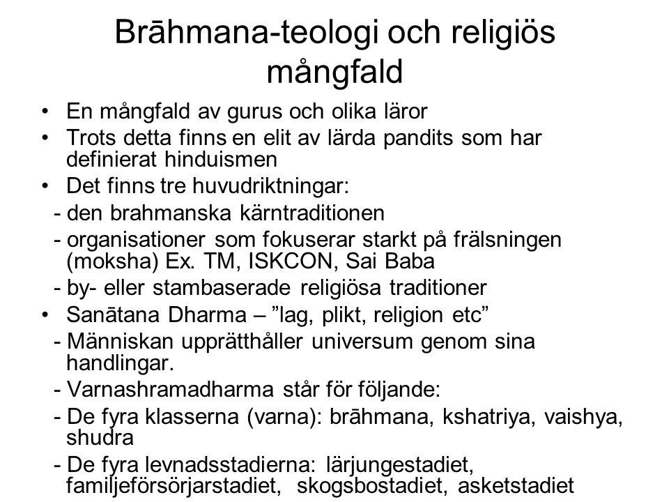 Brāhmana-teologi och religiös mångfald