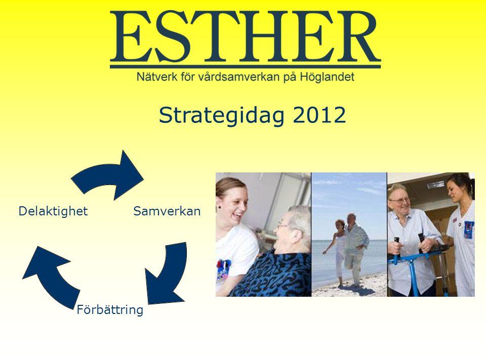 Strategidag 2012