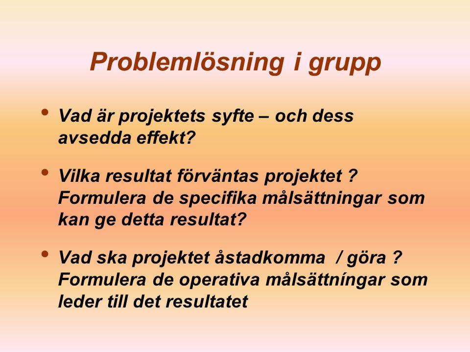 Problemlösning i grupp