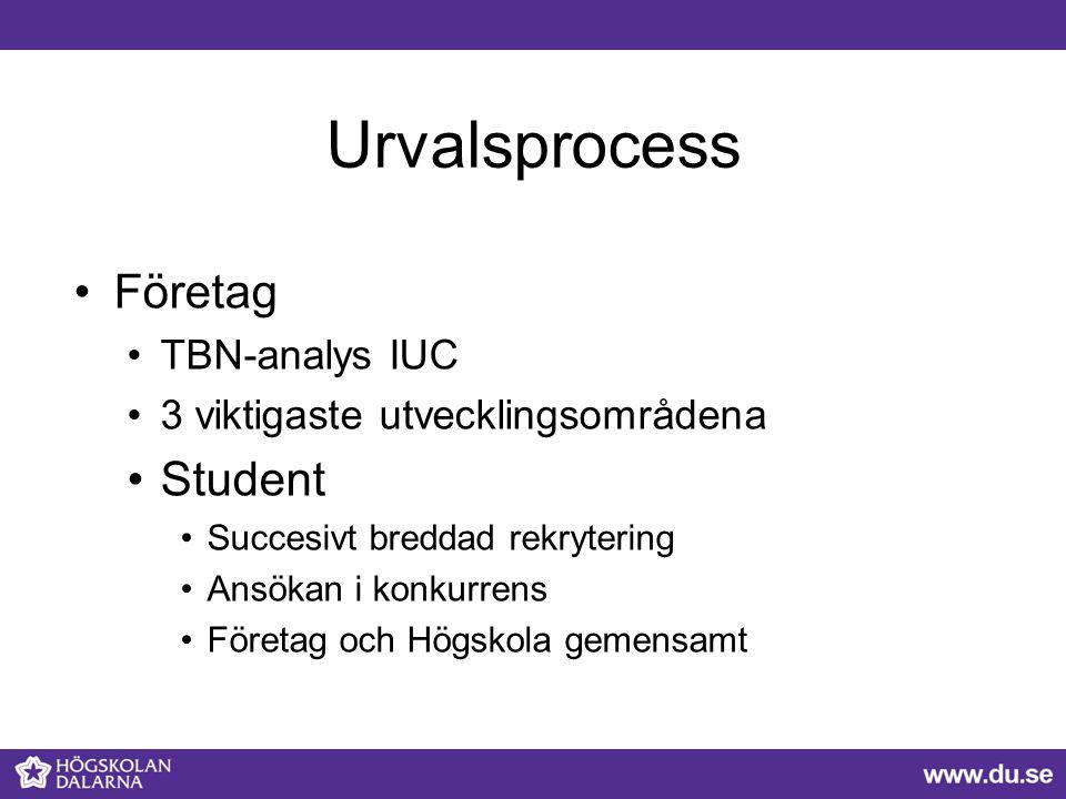 Urvalsprocess Företag Student TBN-analys IUC