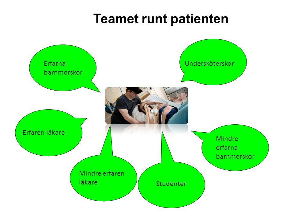 Teamet runt patienten Erfarna barnmorskor Undersköterskor