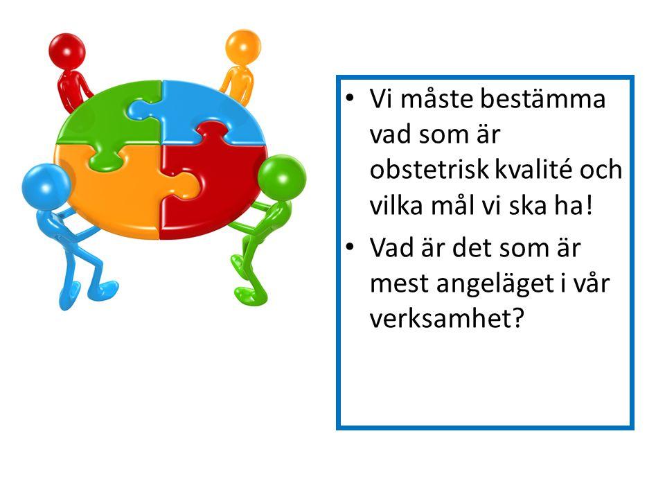 Vi måste bestämma vad som är obstetrisk kvalité och vilka mål vi ska ha!