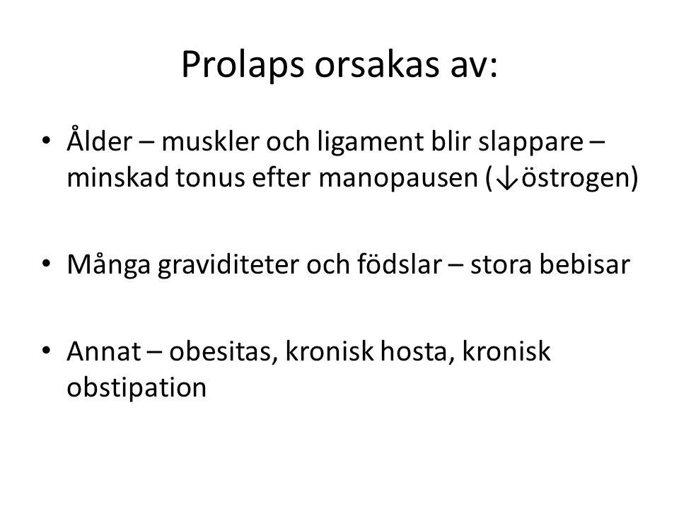 Prolaps orsakas av: Ålder – muskler och ligament blir slappare – minskad tonus efter manopausen (↓östrogen)