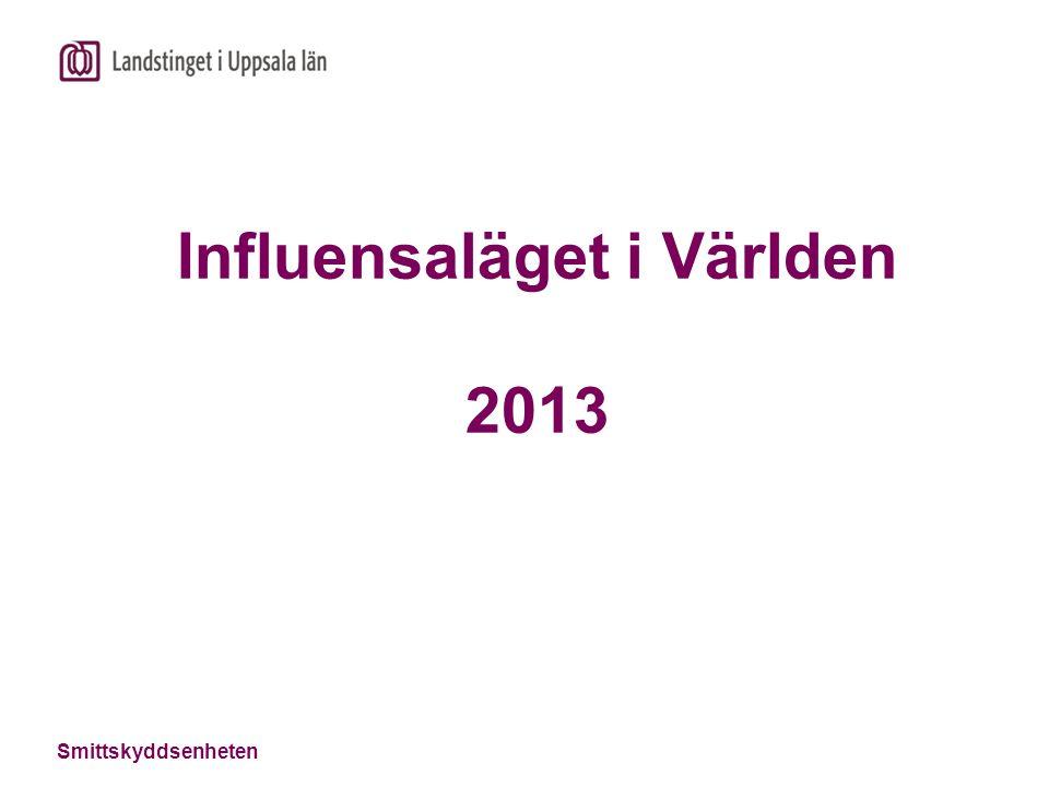 Influensaläget i Världen 2013