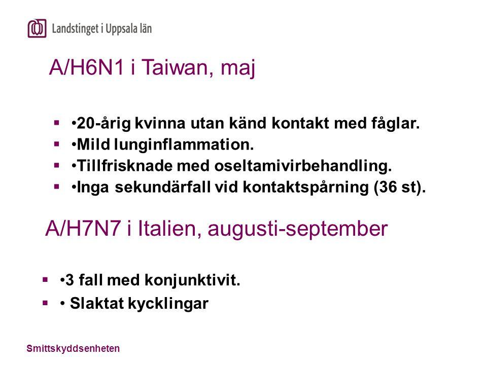 A/H7N7 i Italien, augusti-september