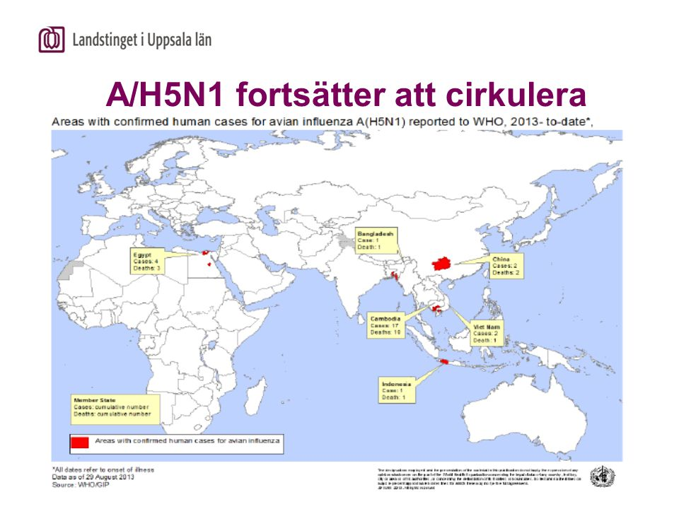 A/H5N1 fortsätter att cirkulera