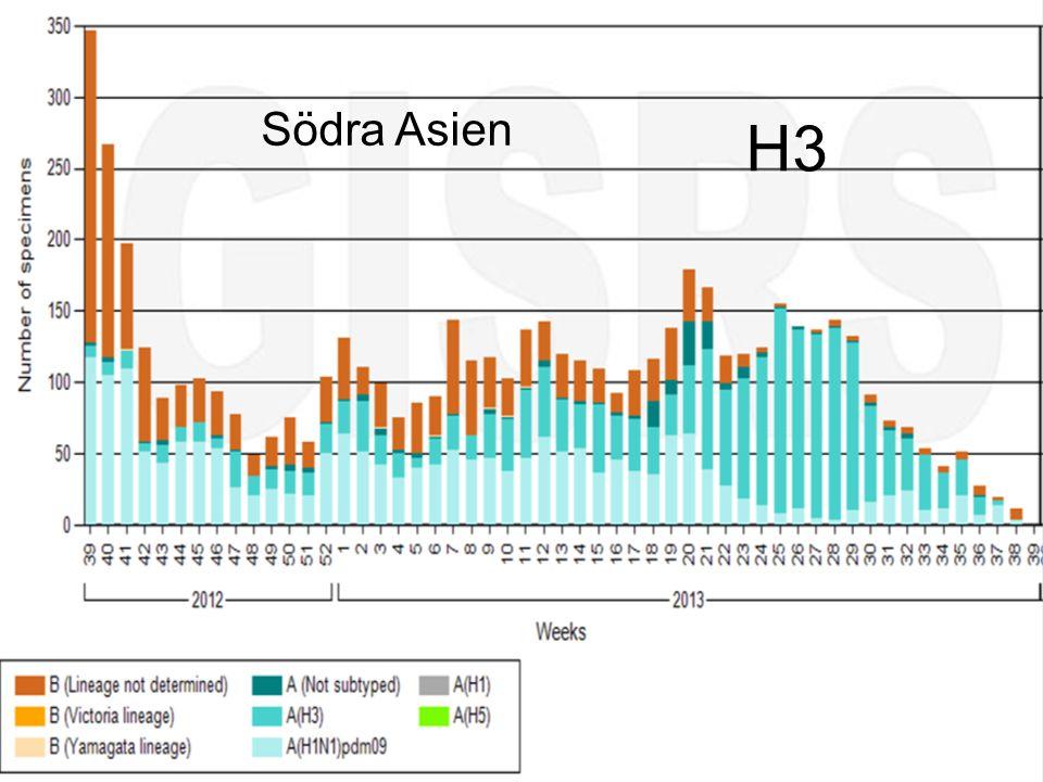 Södra Asien H3