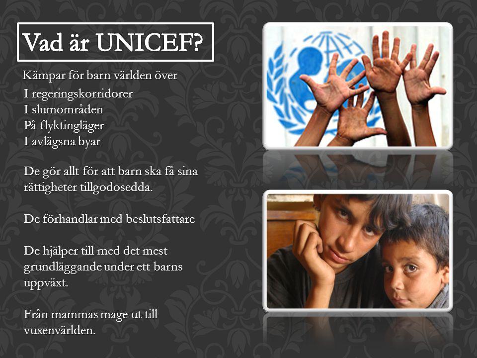 Vad är UNICEF Kämpar för barn världen över