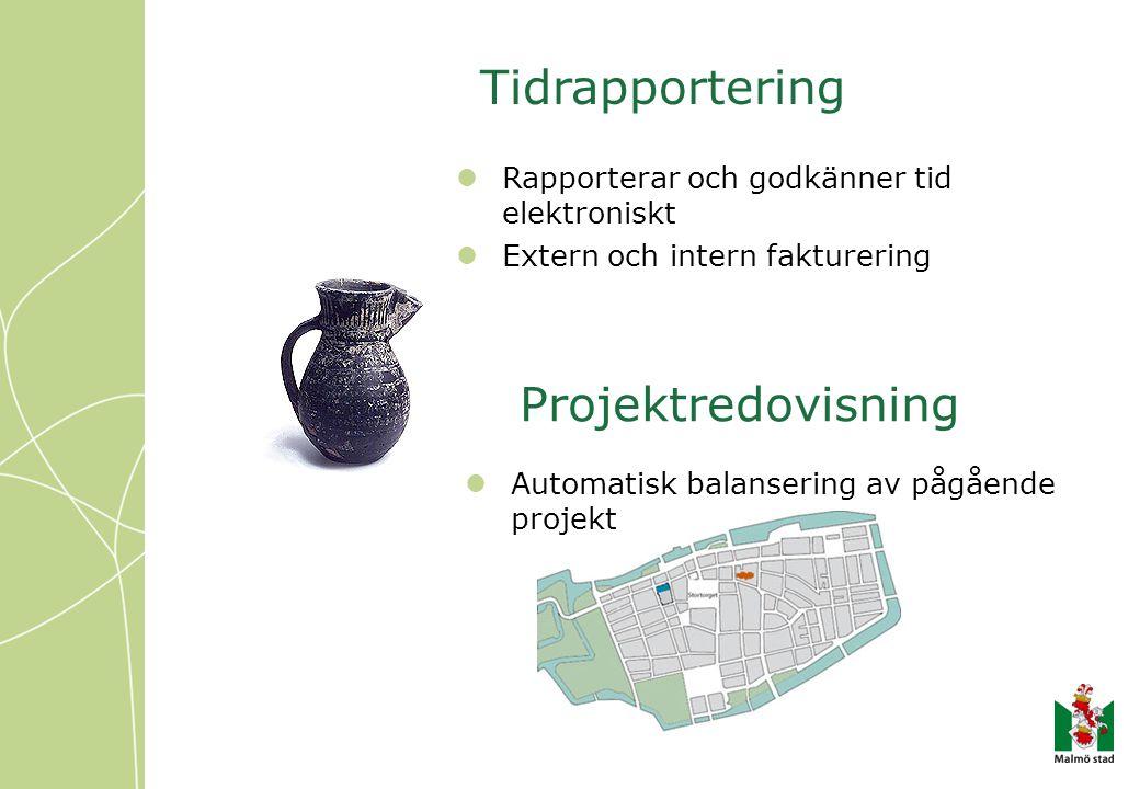 Tidrapportering Projektredovisning