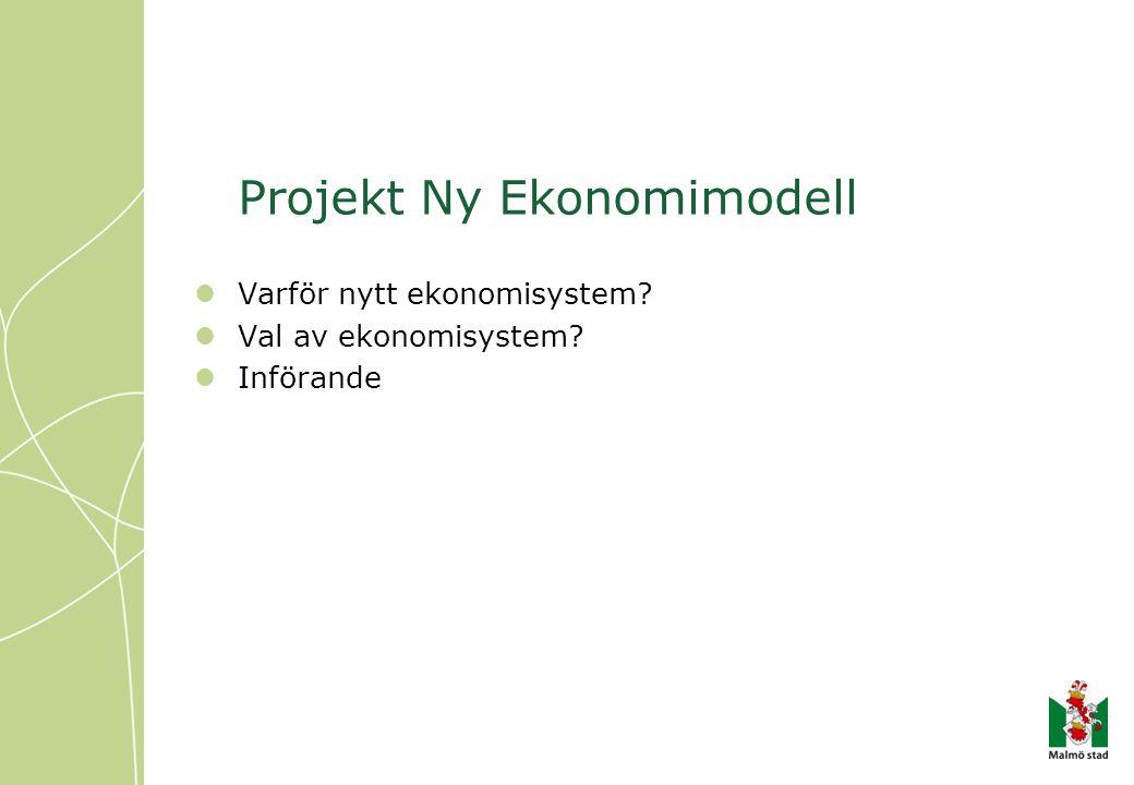Projekt Ny Ekonomimodell