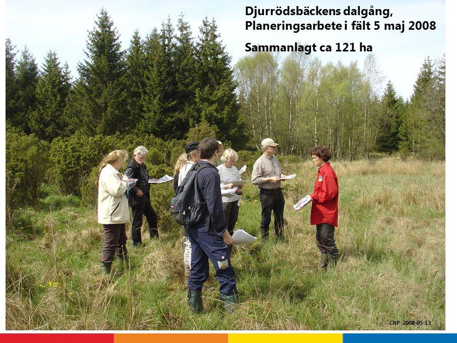 Djurrödsbäckens dalgång, Planeringsarbete i fält 5 maj 2008