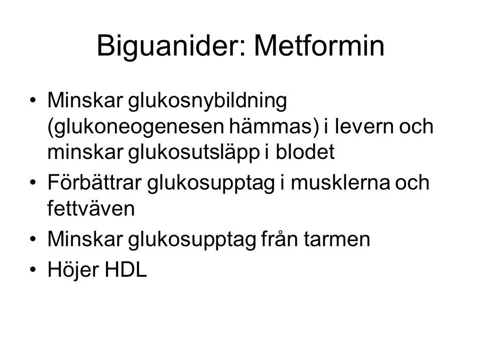 Biguanider: Metformin