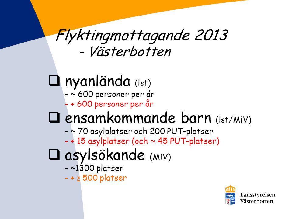 Flyktingmottagande 2013 - Västerbotten