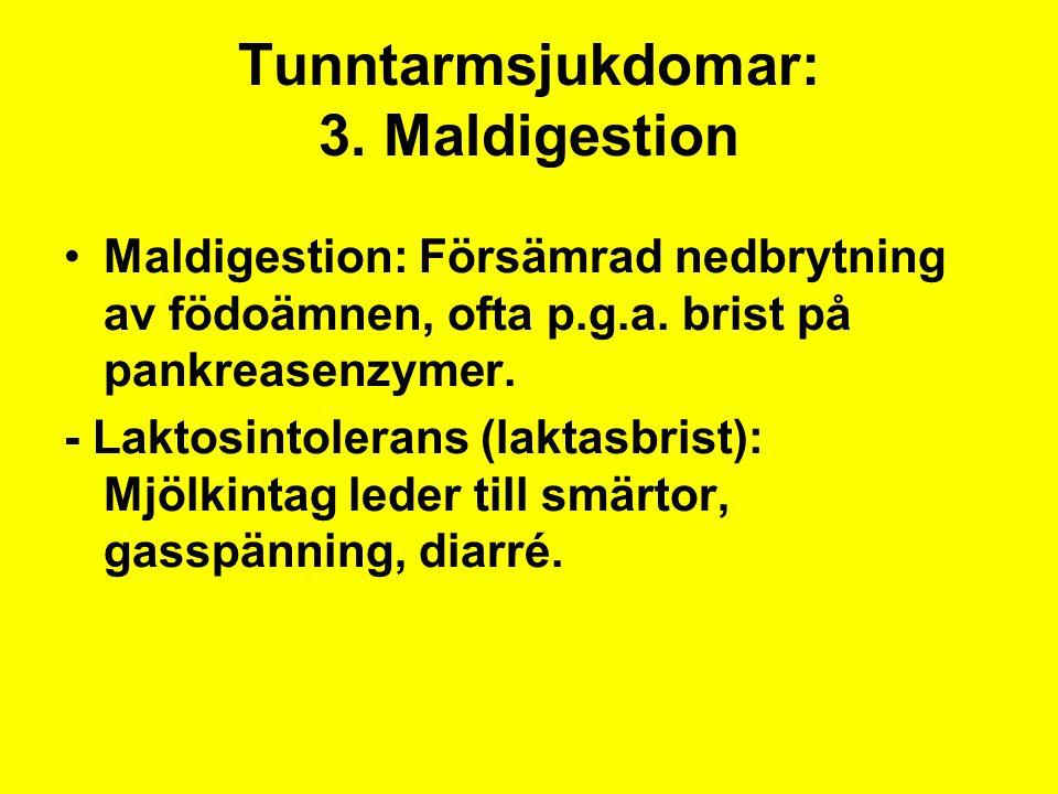 Tunntarmsjukdomar: 3. Maldigestion