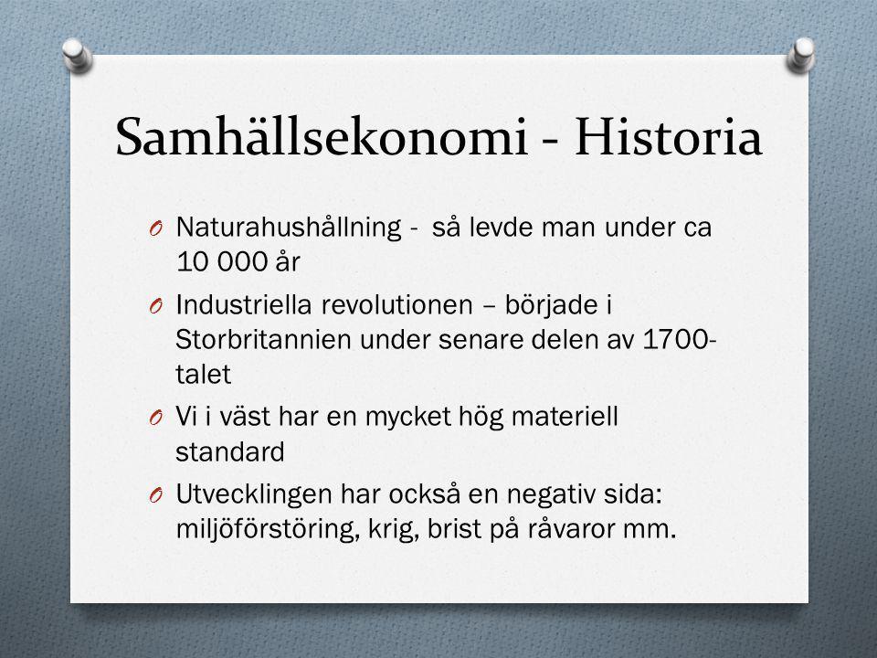 Samhällsekonomi - Historia
