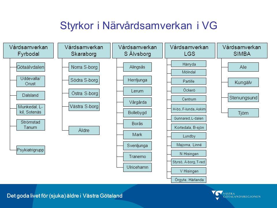 Styrkor i Närvårdsamverkan i VG