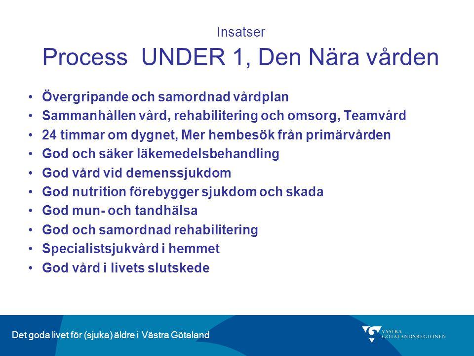 Insatser Process UNDER 1, Den Nära vården