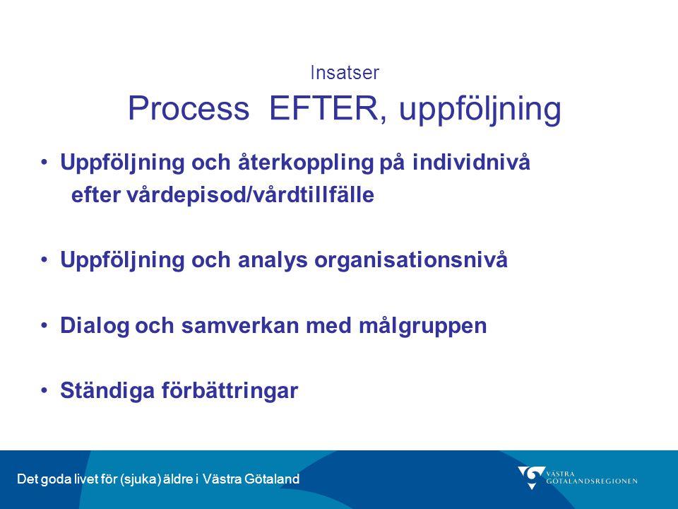 Insatser Process EFTER, uppföljning