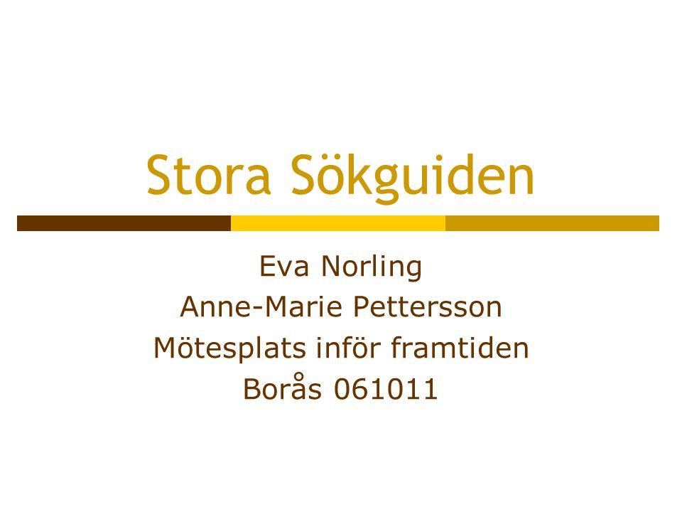 Stora Sökguiden Eva Norling Anne-Marie Pettersson