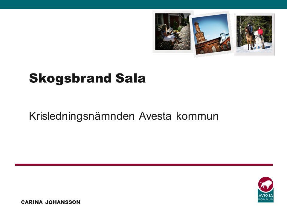Skogsbrand Sala Krisledningsnämnden Avesta kommun Carina Johansson