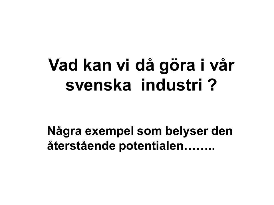 Vad kan vi då göra i vår svenska industri