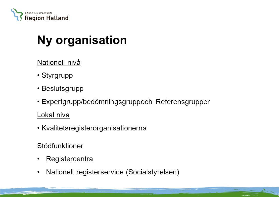 Ny organisation Nationell nivå Styrgrupp Beslutsgrupp