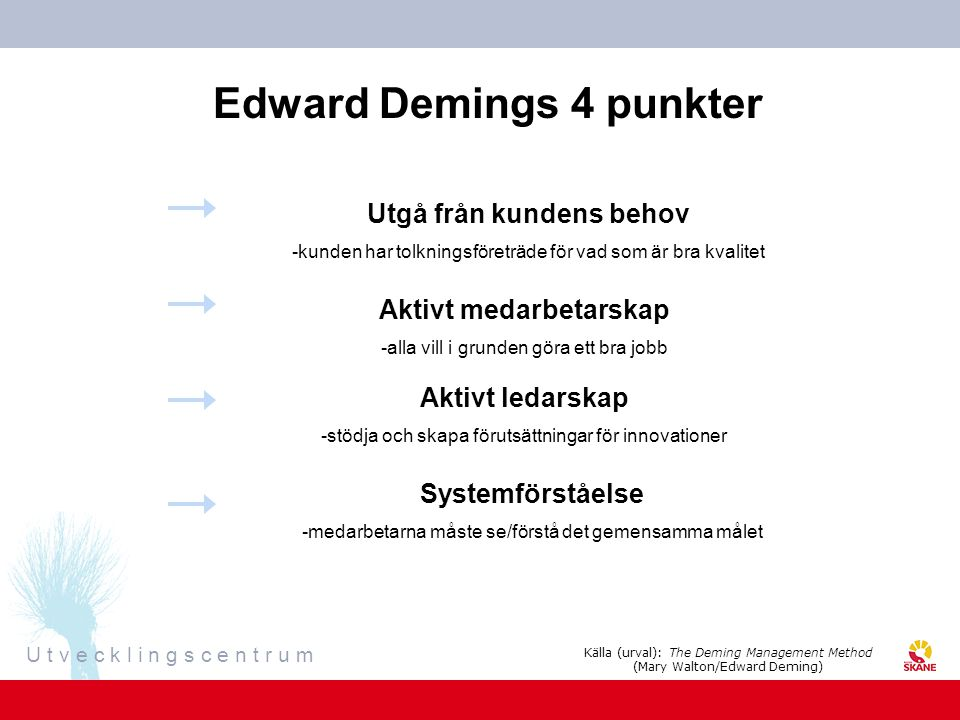 Edward Demings 4 punkter