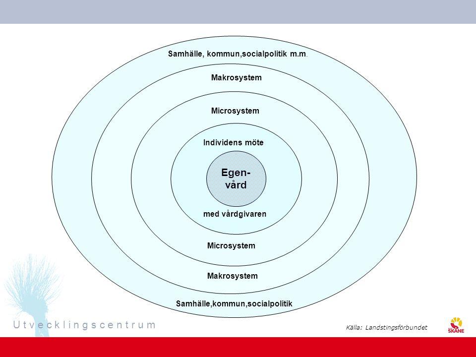 Egen- vård Samhälle, kommun,socialpolitik m.m. Makrosystem Microsystem