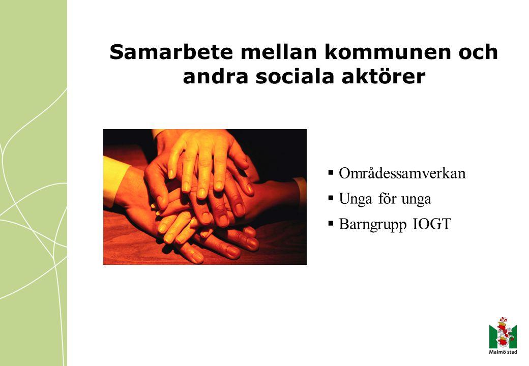 Samarbete mellan kommunen och andra sociala aktörer