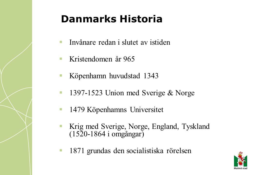 Danmarks Historia Invånare redan i slutet av istiden