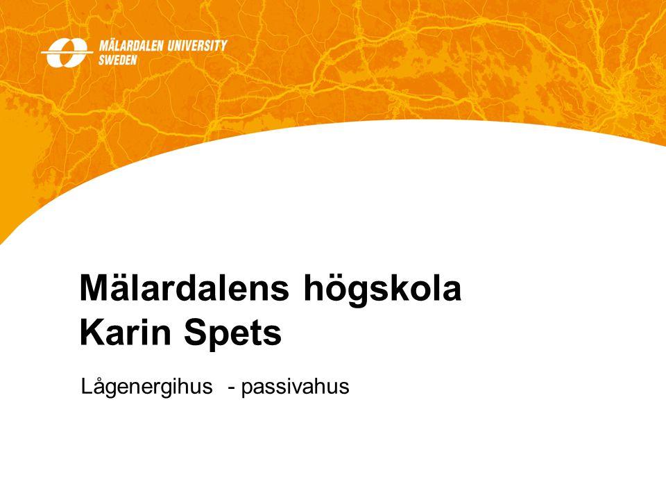 Mälardalens högskola Karin Spets