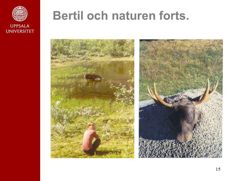 Bertil och naturen forts.