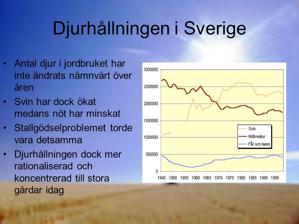 Djurhållningen i Sverige