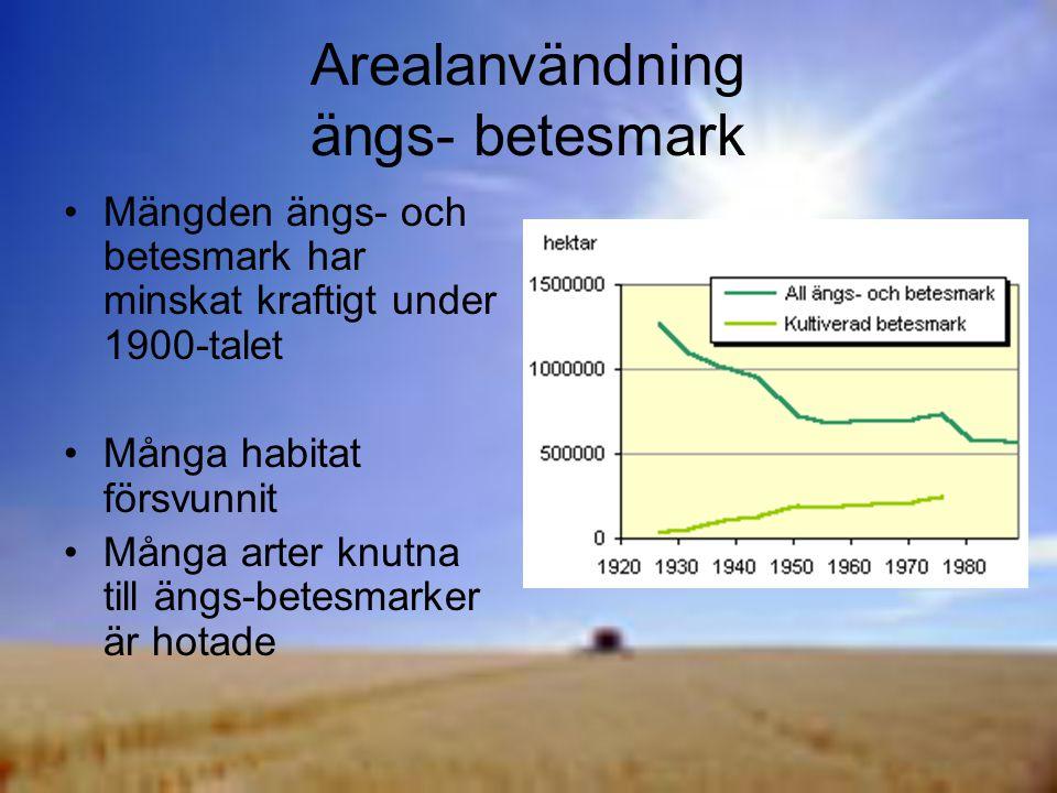 Arealanvändning ängs- betesmark