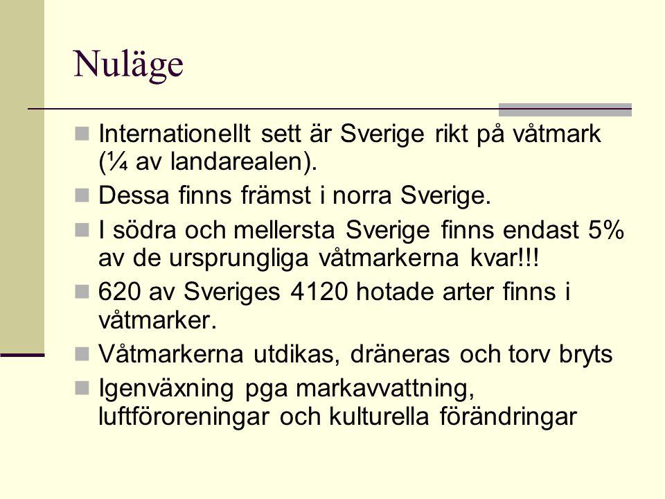 Nuläge Internationellt sett är Sverige rikt på våtmark (¼ av landarealen). Dessa finns främst i norra Sverige.