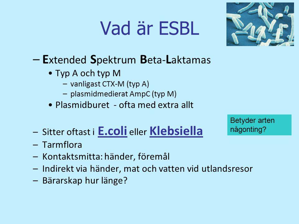 Vad är ESBL Extended Spektrum Beta-Laktamas Typ A och typ M
