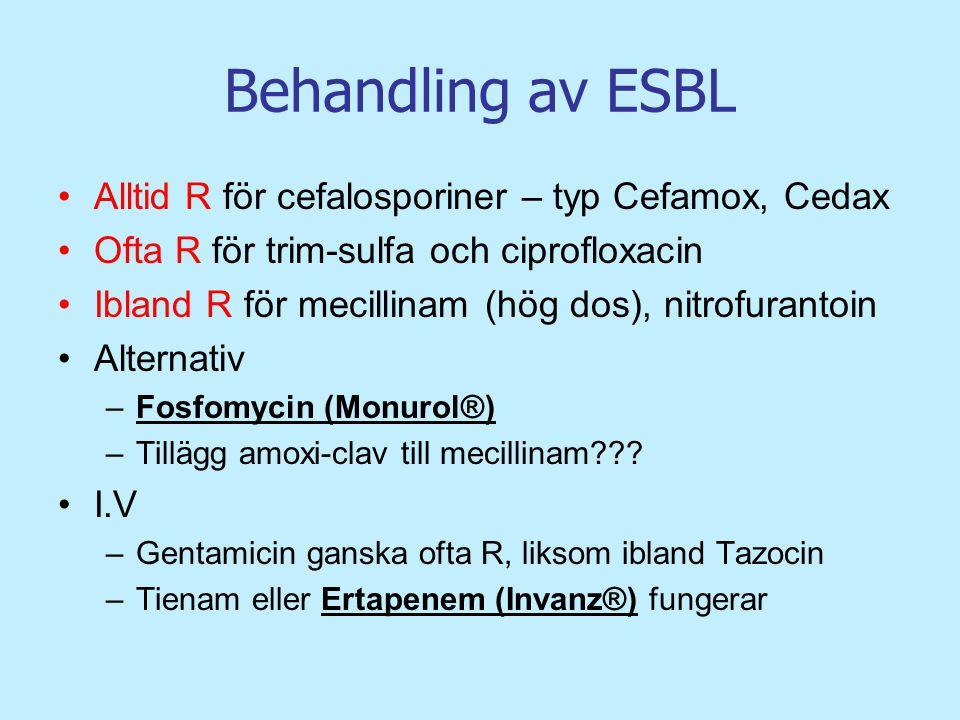 Behandling av ESBL Alltid R för cefalosporiner – typ Cefamox, Cedax