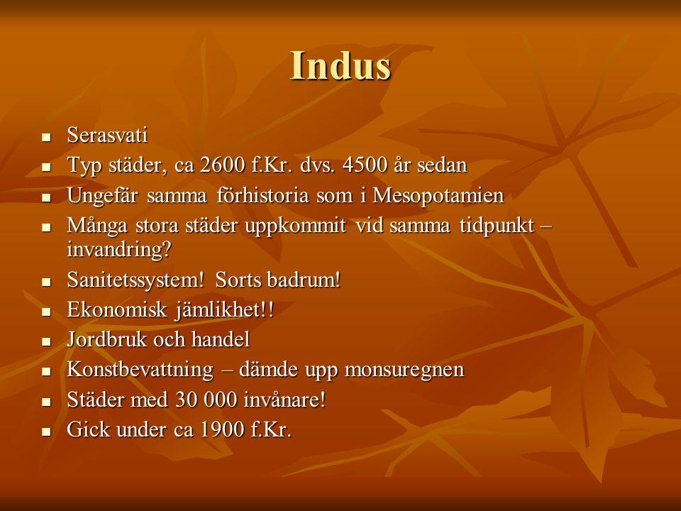 Indus Serasvati Typ städer, ca 2600 f.Kr. dvs. 4500 år sedan