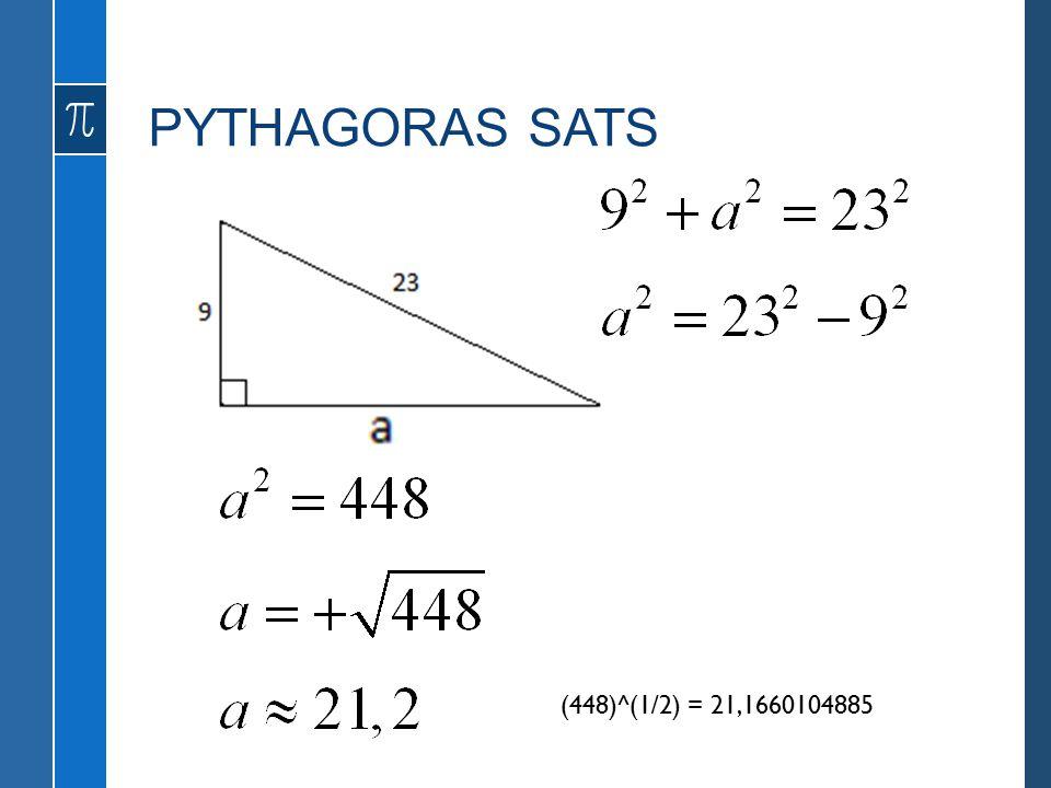 PYTHAGORAS SATS Skogssnäppa (448)^(1/2) = 21,1660104885