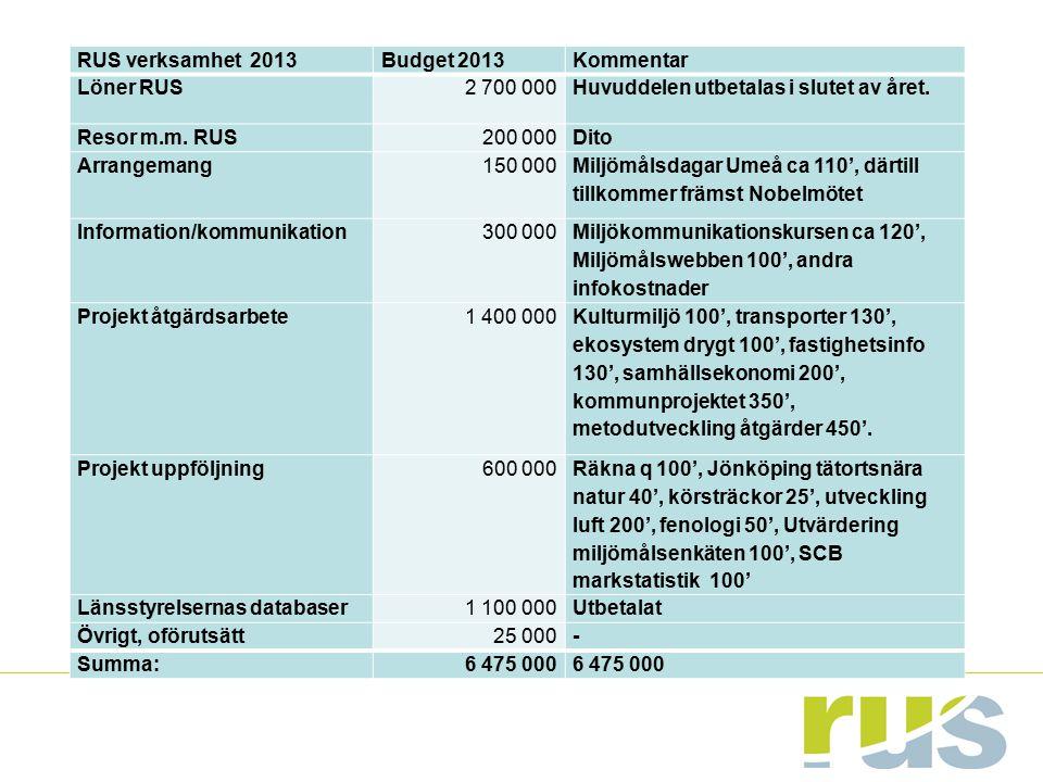 RUS verksamhet 2013 Budget 2013. Kommentar. Löner RUS. 2 700 000. Huvuddelen utbetalas i slutet av året.