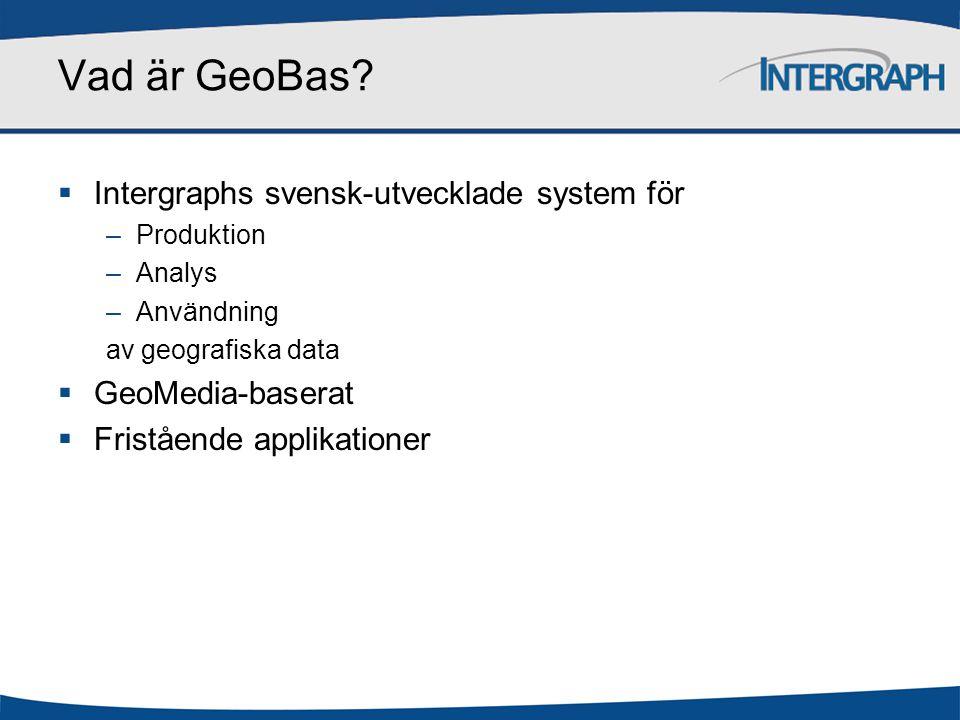 Vad är GeoBas Intergraphs svensk-utvecklade system för
