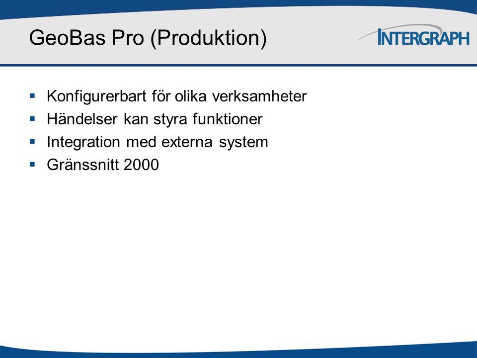 GeoBas Pro (Produktion)