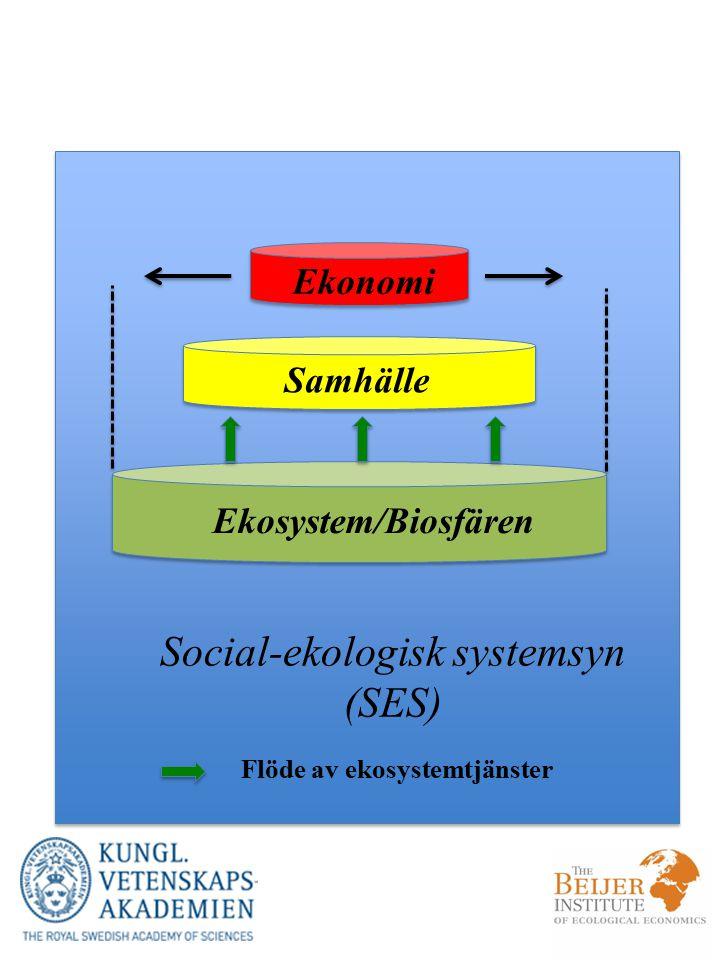 Social-ekologisk systemsyn (SES)