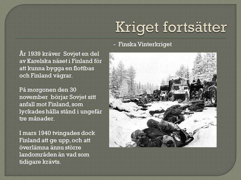 Kriget fortsätter - Finska Vinterkriget