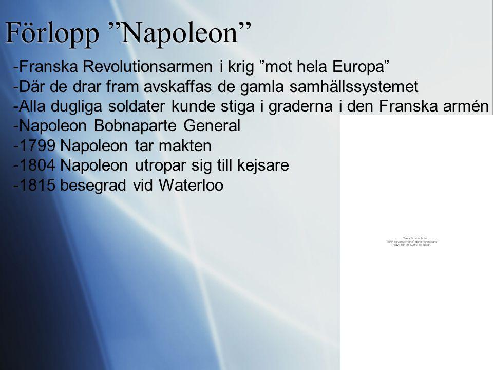 Förlopp Napoleon -Franska Revolutionsarmen i krig mot hela Europa