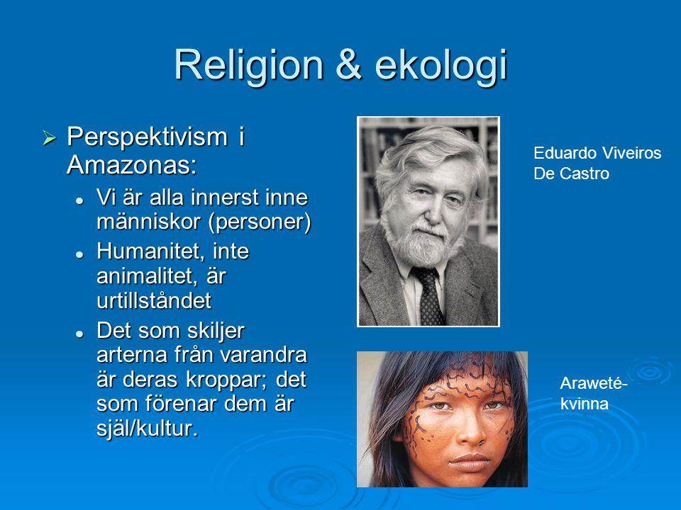 Religion & ekologi Perspektivism i Amazonas: