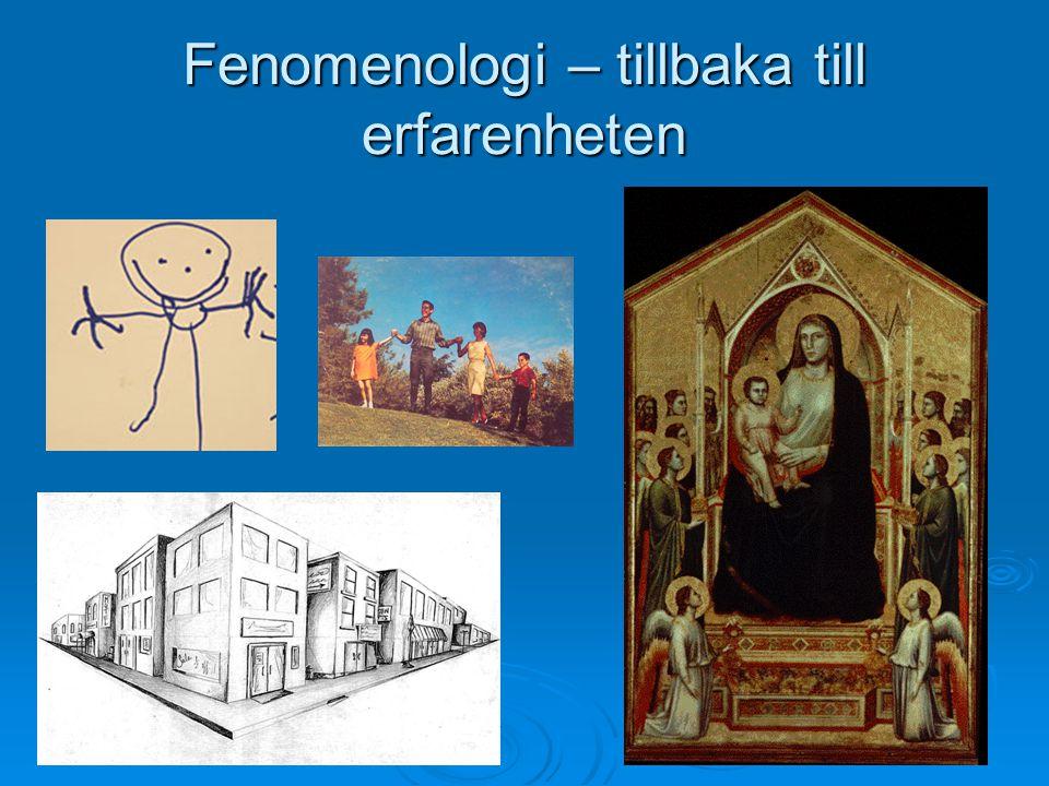 Fenomenologi – tillbaka till erfarenheten