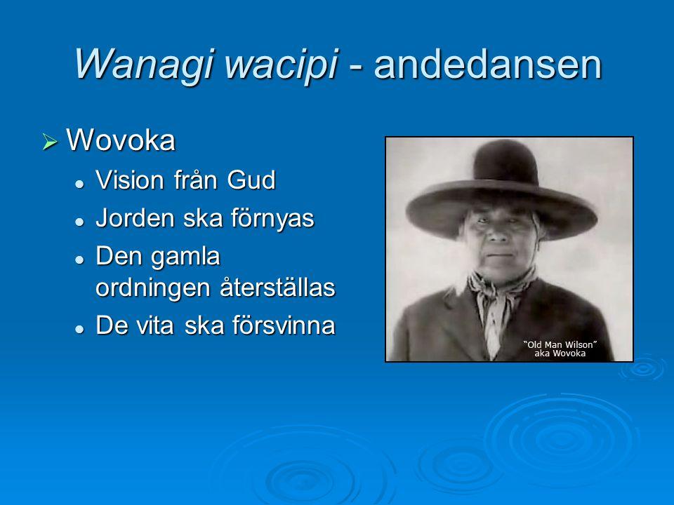 Wanagi wacipi - andedansen