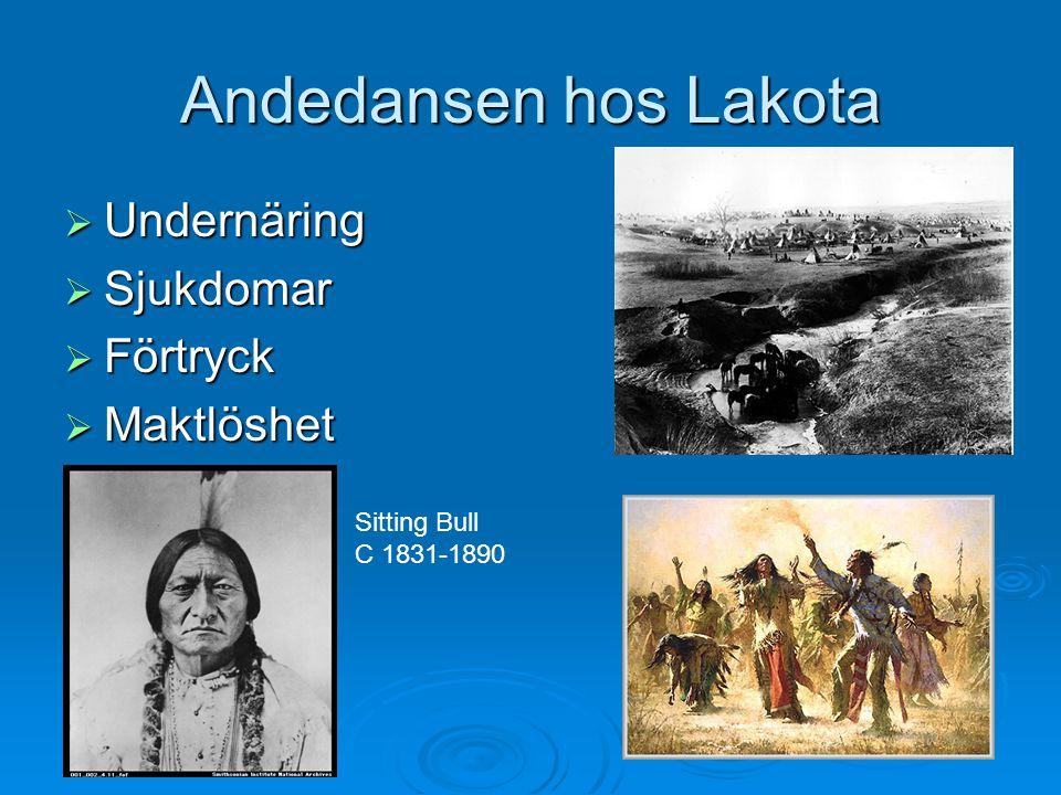 Andedansen hos Lakota Undernäring Sjukdomar Förtryck Maktlöshet